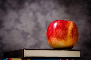 apple-256262