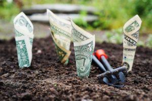 Education Philanthropy, Planting Dollars
