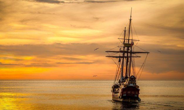 The Minority on the Mayflower